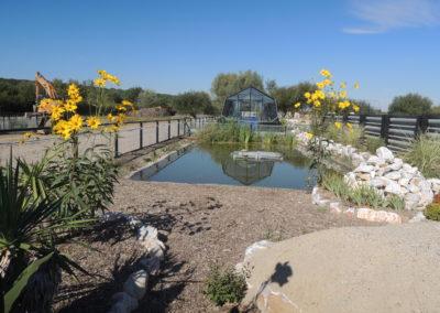 bassin-refuge